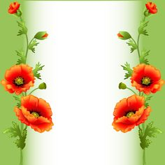 Fond - Printable - Background - Frame - Poppies - Coquelicots