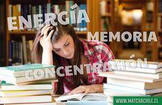 En esta etapa del año donde comienzan las pruebas y exámenes finales de tus estudios nada mejor que acompañarlo con una taza de #MatchaChile  Te mantiene con Energía  Te ayuda a mantener la Concentración  Te fomenta la Memoria  COMPRAS con envío a todo Chile en http://ift.tt/2jo8tPb  - #estudios #exámenes #pruebas #estudiar #chile #matcha #antioxidantes #energía #memoria #concentración #matchadetox #matchachile