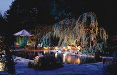 Great looking pool and dramatic tree lit using Hadco lighting products.   #landscapelighting