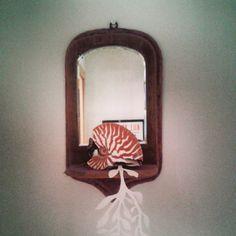 @janettesvn Instagram photos | #Nautilus #shell #papercut #seaweed #antique #mirror #ChezMoi #madebyme #Paris #instaparis #igersparis
