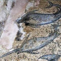 Archaeologists discover villa and mosaic of Ancient Greek fisherman Phainos in Turkey Ancient Greek City, Ancient Greece, Ancient Romans, Ancient History, Villa, Turkey, Roman Mosaics, Square Meter, Cities