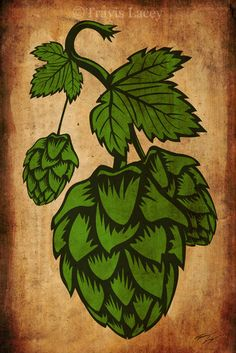 Hops Print by TravisLaceysArt on Etsy, $50.00