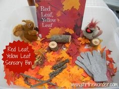 "A sensory tub based on the book Red Leaf, Yellow Leaf by Lois Ehlert - from Stir the Wonder ("",)"