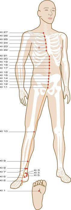 251 Best Acupuncture Images Acupressure Acupuncture Health