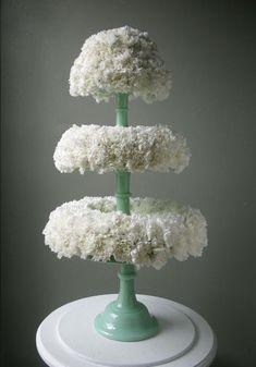 Carnation: Flower of