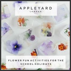 Flower Fun Activities For The School Holidays