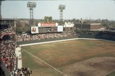 Left field at Sportsman's Park during 1964 World Series. 14 October 1964.