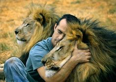 Kevin Richardson (Backstreetboy) = the lion whisperer :)) ; Kingdom-of-the-White-Lion-Parks in the Gauteng-Provinz, Südafrika. Kevin Richardson, Beautiful Creatures, Animals Beautiful, Beautiful Lion, Beautiful Things, Animals And Pets, Cute Animals, Wild Animals, Gato Grande