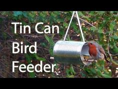 How to make a bird feeder out of a tin can. Nice way to recycle a food can and turn it into something useful. Fill it with seed and watch the birds come. Bird Feeder Hangers, Make A Bird Feeder, Bird Feeder Plans, Bird Feeders, Woodworking Projects For Kids, Woodworking Jobs, Funny Bird, Bird Feeding Station, Recycled Tin Cans
