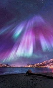 35 Fascinating Photos of Nature The amazing Northern Lights, officially known in the Northern hemisphere as Aurora Borelias, are natural phenomena that features amazing colored light Beautiful Sky, Beautiful World, Beautiful Places, Beautiful Gardens, Beautiful Norway, All Nature, Science And Nature, Photos Of Nature, Norway Nature