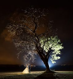 Gauteng Wedding Venues / Reception venues for a wedding, at elegant country houses, cosy inns, rustic barns, trendy restaurants and exclusive hotels .