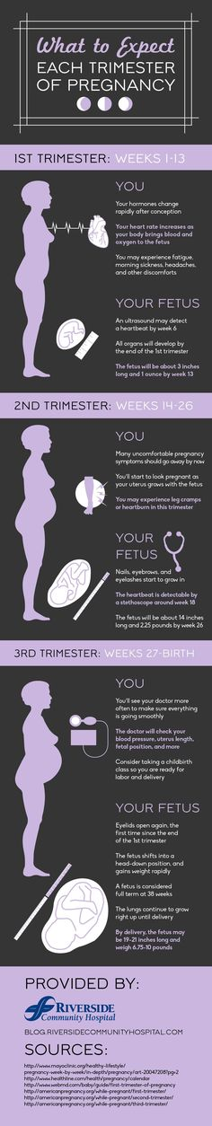 Early symptoms of pregnancy include headaches and morning sickness, but these symptoms should subside by your second trimester! Learn about each trimester by viewing this infographic.