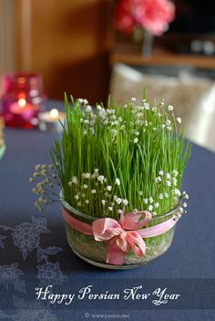 Happy Persian New Year by {JooJoo}, via Flickr