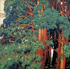 Gustave Baumann   They appear to me to be redwoods but... Beautiful is what it is!