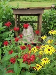 Summer time perfect!  Love bee balm and rudbeckia.