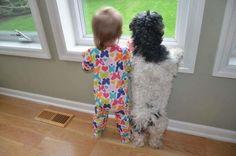 犬と子どもが肩を並べて興味津々