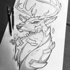 Deer pencils! I'm liking the direction though. #deer #direction #movement #animals #sketch #drawing #illustration #tattoo