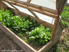 ThanksDo It Yourself Kitchen Garden Inspiration: Build an Amish Cold Frame awesome pin