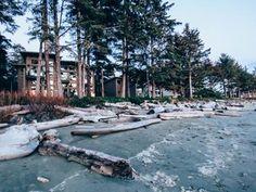 Top Accommodations in Tofino, British Columbia, Canada Tofino Bc, Surfing Destinations, Beach Resorts, Ski Resorts, Alaskan Cruise, Vancouver Island, Travel Deals, Canada Travel, Oregon Coast