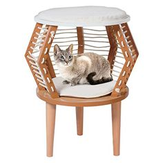 PennPlax Cat Walk Contempoary Rester Furniture for Cats ** Check this awesome product by going to the link at the image.