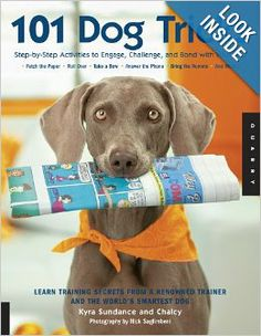 101 Dog Tricks: Step by Step Activities to Engage, Challenge, and Bond with Your Dog: Chalcy, Kyra Sundance: 9781592533251: Amazon.com: Book...