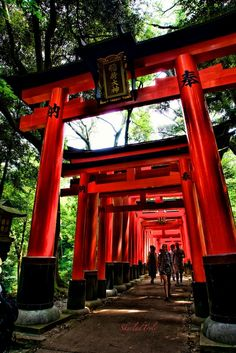 Torri Gates by Alex G. Places Around The World, Oh The Places You'll Go, Asia Travel, Japan Travel, Fushimi Inari Taisha, Torii Gate, Japanese Landscape, Kyoto Japan, Japan Art