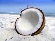 Anything with coconut in it, on it , around it
