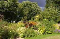 John Grimshaw's Garden Diary: July 2010