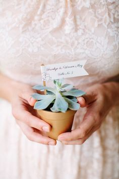 Succulent escort card: http://www.stylemepretty.com/north-carolina-weddings/chapel-hill-north-carolina/2015/07/30/romantic-north-carolina-botanical-gardens-wedding/ | Photography: Anna Routh - http://annarouthphoto.com/:
