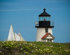 The lighthouse, sea, and sails; classic elements of beach cottage life
