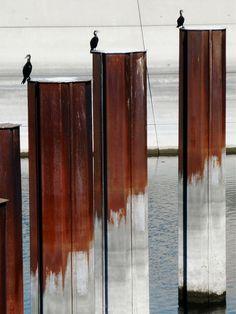 Gernot Schwarz, Rust 55f on ArtStack #gernot-schwarz #art