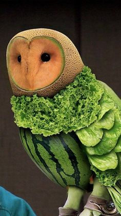 Food Sculpture of a Barn Owl - I'd eat it, but only because I would hate the food to go to waste!