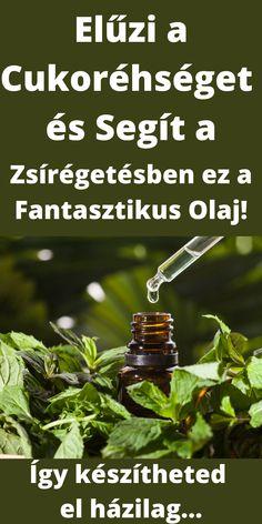 Keto, Herbs, Sport, Food, Deporte, Sports, Essen, Herb, Meals