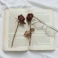 book is a moodbooster shared by Gabriella on We Heart It Book Aesthetic, Aesthetic Images, Aesthetic Wallpapers, Witch Aesthetic, Aesthetic Photo, Autumn Witch, Types Of Aesthetics, Book Background, Fairytale Art