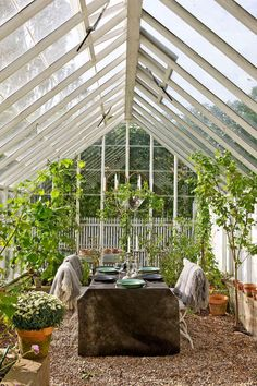 Greenhouse picnic /Scandinavian Fancy Windows