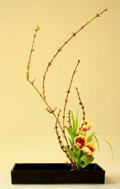 how to make ikebana flower arrangement   Japanese Flower Arranging (Ikebana): New Season Begins « Orcas Issues ...