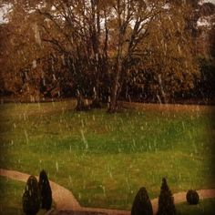 The first snow at Dunboyne Castle Hotel & Spa Winter Is Here, Hotel Spa, Ireland, Castle, Snow, Photo And Video, Christmas, Instagram, Xmas