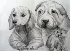 Drawing in pencil (Аnimals)
