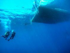 Ayvalık dalış kursu - ida dalış merkezi #scuba #scubadiving #diving #underwater #dalisnoktam #ayvalikdalis #idadalismerkezi #ayvalikscuba #ayvalikdalisnoktasi #daliskursu #dalış #dalisokulu #insta #ayvalık www.idadiving.com