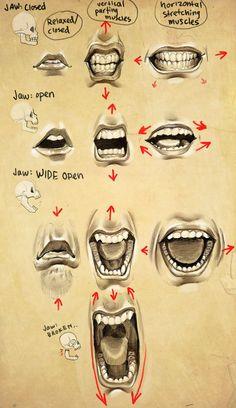 Anatomi Ağız / Anatomy Mouth | Find us on > https://www.facebook.com/maviturta , https://instagram.com/maviturta/ , https://twitter.com/maviturta , https://www.facebook.com/groups/maviturta/ #Anatomi #anatomy #agız #mouth #drawing #design #sketch #sketching #character #digital #digitalpainting