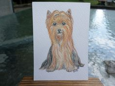 ACEO painting water color yorkshire terrier  by ADragonflysFancy