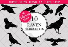 Crow Silhouette Clipart Vector includes PNG files with transparent backgrounds at The PNGs are approximately 10 inches at it's widest point. Vogel Silhouette, Bird Silhouette Tattoos, Crow Silhouette, Silhouette Clip Art, Black Silhouette, Silhouette Studio, Feather Tattoos, Nature Tattoos, Tattoo Bird