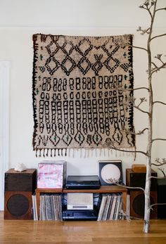 The rug on the wall.