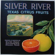 Silver River Brand Texas Citrus Fruits