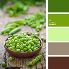 color verde guisante, combinación contrastante de colores verde y marrón, de color verde lechuga, elección del color, marrón grisáceo, marrón y verde, marrón y verde lechuga, selección de colores, tonos marrones, tonos verdes, verde oscuro y verde claro.