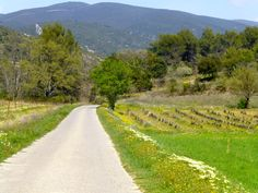 Lane in Lourmarin, Luberon Provence, France
