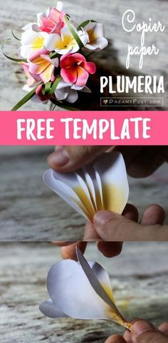 Printer paper Plumeria, free template and full tutorial