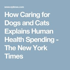 How Caring for Dogs and Cats Explains Human Health Spending - The New York Times