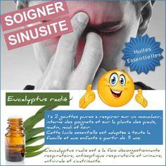 soigner une sinusite avec l'eucalyptus radié