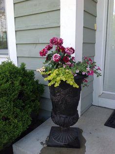 Dahlia container garden Dahlia, Container Gardening, Decorating Ideas, Plants, Luxury, Plant, Container Garden, Dahlias, Planets